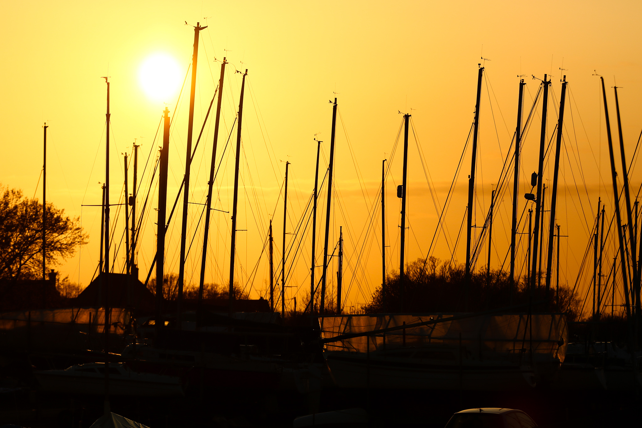 Blackwater Trail Events