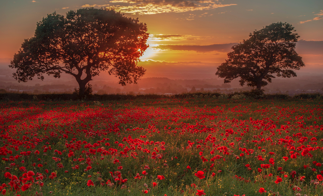 Remembrance Sunday 2021